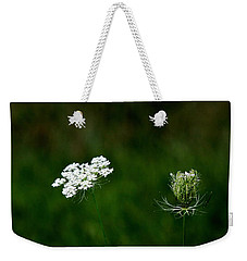 Weekender Tote Bag featuring the photograph Transformation  by Ramabhadran Thirupattur