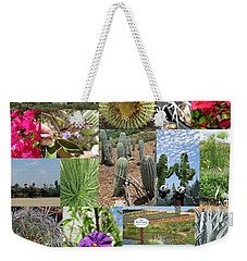 Weekender Tote Bag featuring the photograph Traveling Baby Pandas At The Plant Nursery. California. by Ausra Huntington nee Paulauskaite