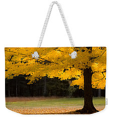 Tree Canopy Glowing In The Morning Sun Weekender Tote Bag
