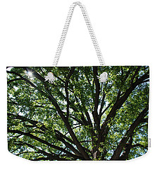 Tree Canopy Sunburst Weekender Tote Bag