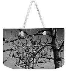 Tree In A Row  Weekender Tote Bag