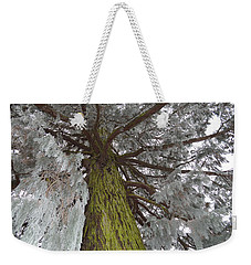 Weekender Tote Bag featuring the photograph Tree In Winter by Felicia Tica