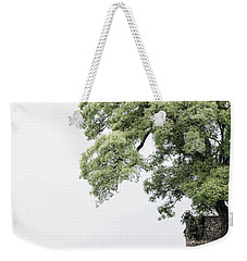 Tree Next To A Lake Weekender Tote Bag