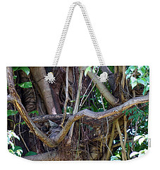 Weekender Tote Bag featuring the photograph Tree by Rafael Salazar