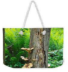Tree Remnant Weekender Tote Bag