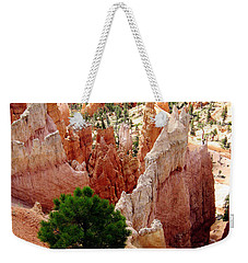 Weekender Tote Bag featuring the photograph Tree's Eye View by Meghan at FireBonnet Art