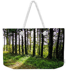 Trees On The Shannon Estuary Weekender Tote Bag