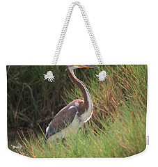 Weekender Tote Bag featuring the photograph Tri-color Heron by Leticia Latocki