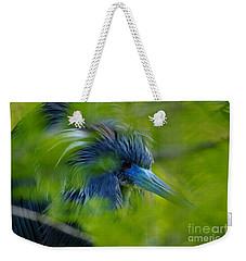 Tri-colored Heron Concealed    Weekender Tote Bag