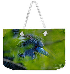 Tri-colored Heron Concealed    Weekender Tote Bag