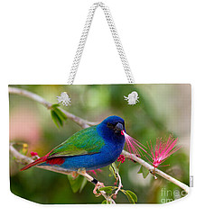 Weekender Tote Bag featuring the photograph Tricolor Parrot Finch by Les Palenik