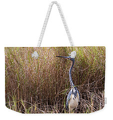 Weekender Tote Bag featuring the photograph Tricolored Heron Peeping Over The Rushes by John M Bailey