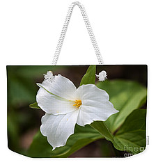 Weekender Tote Bag featuring the photograph Trillium by Todd Blanchard