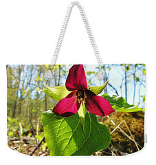 Weekender Tote Bag featuring the photograph Trillium Wild Flower by Sherman Perry