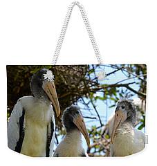 Triplet Wood Stork Nestlings Weekender Tote Bag by Richard Bryce and Family