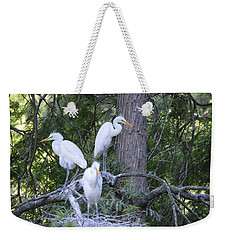 Weekender Tote Bag featuring the photograph Triplets by Judith Morris
