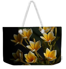 Weekender Tote Bag featuring the photograph Tropic Welcome by Miguel Winterpacht