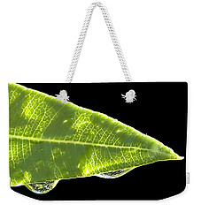 Tropical Reflections Weekender Tote Bag by Anne Rodkin