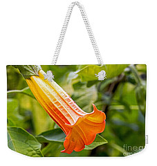 Weekender Tote Bag featuring the photograph Trumpet Flower by Kate Brown