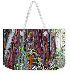 Trunk Of Coastal Redwood In Armstrong Redwoods State Preserve Near Guerneville-ca Weekender Tote Bag by Ruth Hager