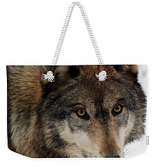Weekender Tote Bag featuring the photograph Trusting by Richard Bryce and Family