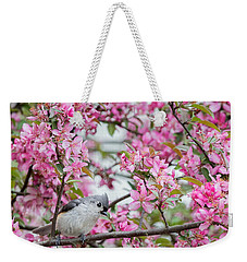 Tufted Titmouse In A Pear Tree Square Weekender Tote Bag