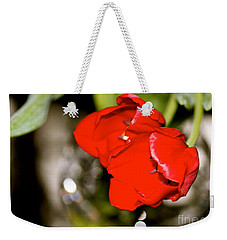 Tuips In Red Study 5 Weekender Tote Bag by Cathy Dee Janes