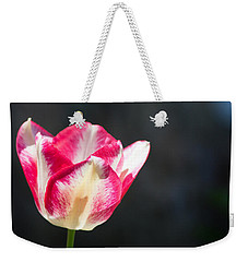 Tulip On Black Weekender Tote Bag by Photographic Arts And Design Studio