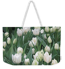 Weekender Tote Bag featuring the photograph Tulip White Show Flower Butterfly Garden by Navin Joshi
