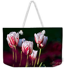 Weekender Tote Bag featuring the photograph Tulips Garden Flowers Color Spring Nature by Paul Fearn