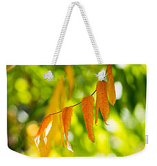 Weekender Tote Bag featuring the photograph Turning Autumn by Aaron Aldrich