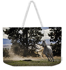 Turning On A Dime Weekender Tote Bag by Wes and Dotty Weber