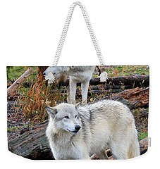 Weekender Tote Bag featuring the photograph Twin Wolves by Athena Mckinzie