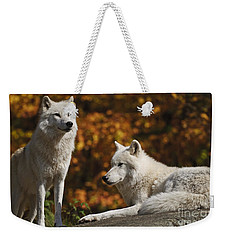 Weekender Tote Bag featuring the photograph Two Arctic Wolves On Rock Hill by Wolves Only