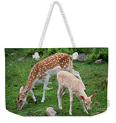 Two Babes Weekender Tote Bag