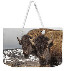 Two Bison Weekender Tote Bag