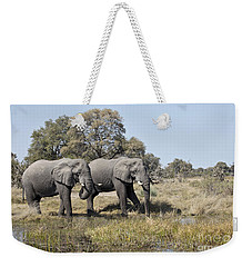 Two Bull African Elephants - Okavango Delta Weekender Tote Bag by Liz Leyden
