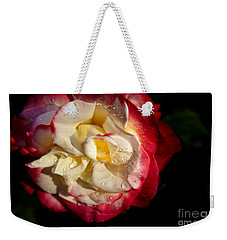 Weekender Tote Bag featuring the photograph Two Color Rose by David Millenheft