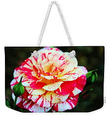 Two Colored Rose Weekender Tote Bag by Cynthia Guinn