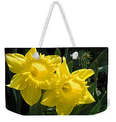 Weekender Tote Bag featuring the photograph Two Daffodils by Kathy Barney