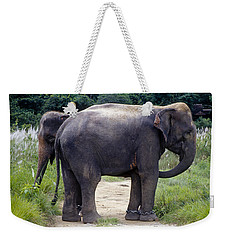 Two Elephants Weekender Tote Bag