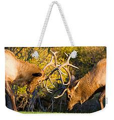 Two Elk Bulls Sparring Weekender Tote Bag