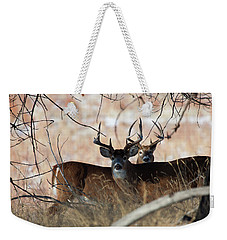 Weekender Tote Bag featuring the photograph Two In The Bush by Jim Garrison
