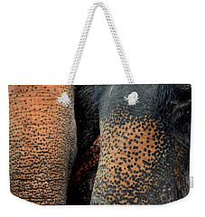 Weekender Tote Bag featuring the photograph Two Pals by Michelle Meenawong