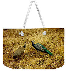 Weekender Tote Bag featuring the photograph Two Peacocks Yaking by Amazing Photographs AKA Christian Wilson