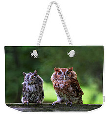 Two Screech Owls Weekender Tote Bag