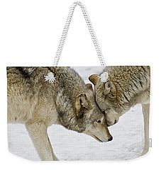 Two Wolves In  A Staredown Weekender Tote Bag by Gary Slawsky