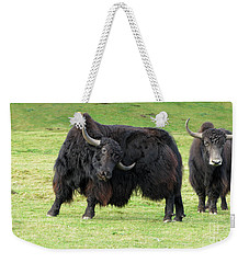 Yaketty Yak Weekender Tote Bag by Liz Leyden