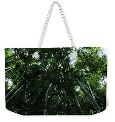 Weekender Tote Bag featuring the photograph Under The Bamboo Haleakala National Park  by Vivian Christopher
