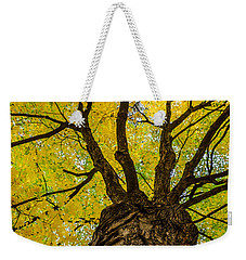 Under The Yellow Canopy Weekender Tote Bag